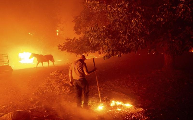 """California trong vòng vây của """"giặc lửa"""" -0"""