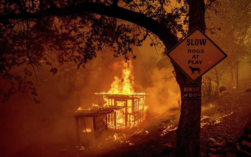 """California trong vòng vây của """"giặc lửa"""" -2"""