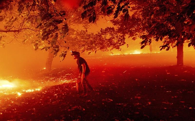 """California trong vòng vây của """"giặc lửa"""" -3"""