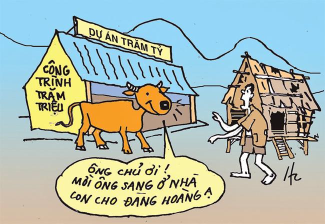 Ngu như bò ??? -0