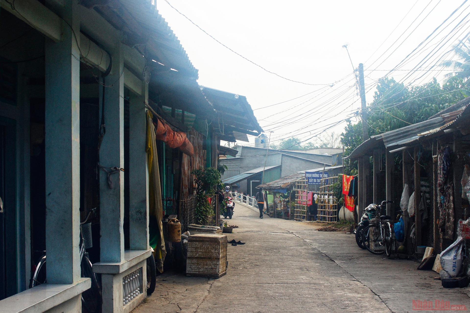 Vườn cò Bằng Lăng - sân chim lớn nhất đồng bằng sông Cửu Long -1