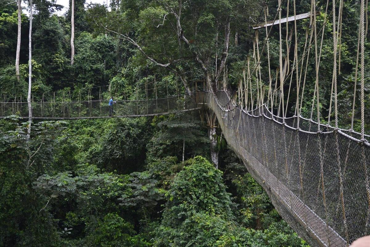 10 cây cầu không dành cho những người yếu tim -0