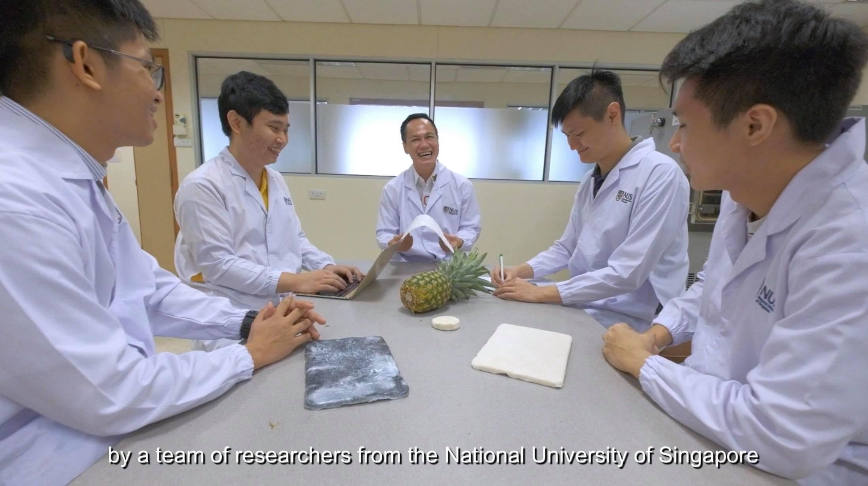 Nhà khoa học gốc Việt biến lá dứa thành vật liệu aerogel vô giá -0