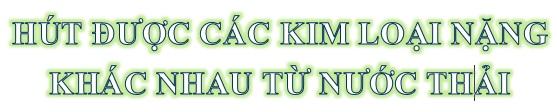 Nhà khoa học gốc Việt biến lá dứa vô dụng thành chất vật liệu aerogel vô giá -0
