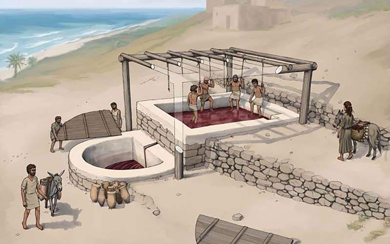 Phát hiện xưởng rượu nho cổ nhất thế giới -0