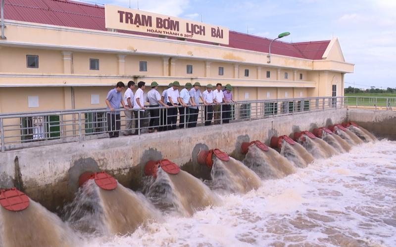 Gần 3.700 ha lúa ngã đổ do úng lụt -0