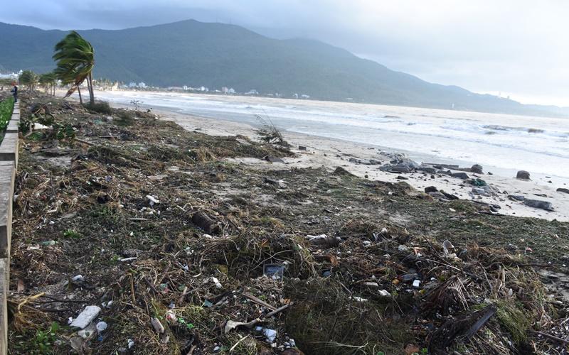 Nhiều km đường biển Đà Nẵng ngập trong cát -1