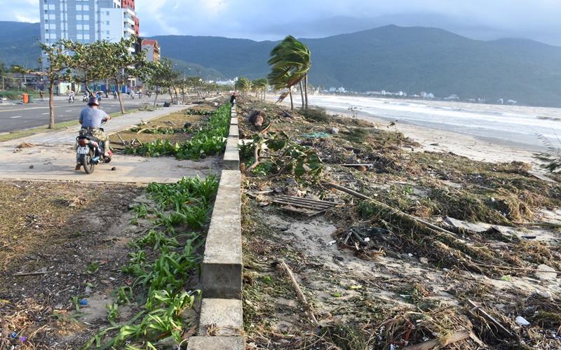 Nhiều km đường biển Đà Nẵng ngập trong cát -2