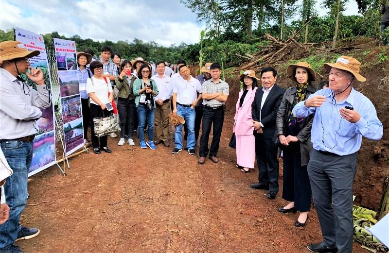 Hợp tác phát triển vùng nguyên liệu cà-phê quy mô lớn được xác nhận tại Đắk Lắk -0