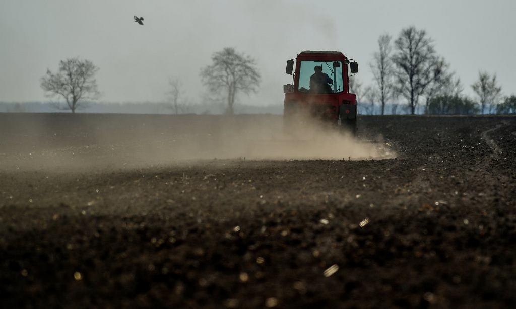 FAO: Lớp đất bề mặt trên toàn cầu đang bị suy thoái -0