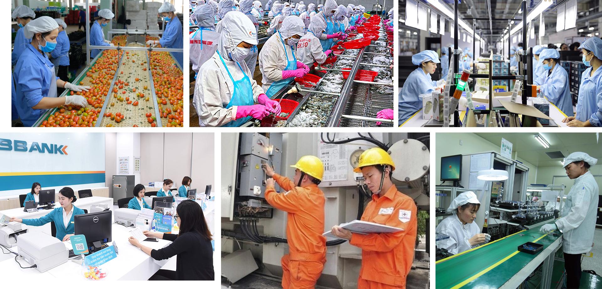Tạo động lực cho thị trường lao động hiện đại và việc làm bền vững -0
