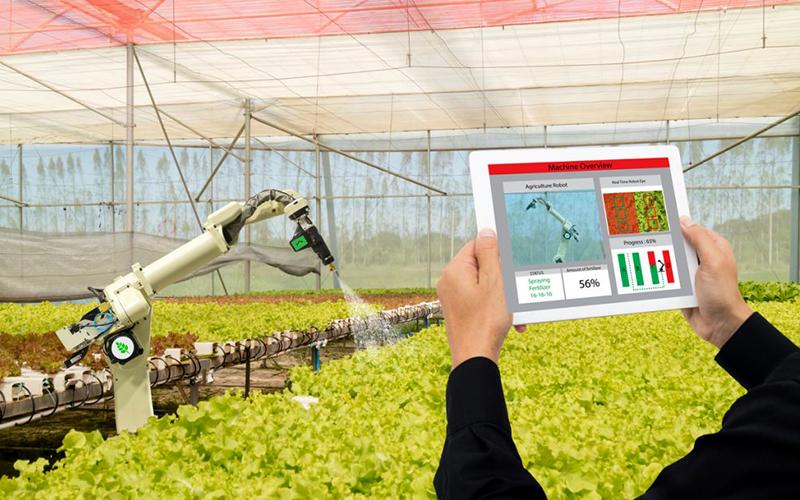 Các trang trại do AI và robot vận hành đang chuyển đổi nền nông nghiệp trên thế giới -0