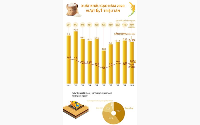 Hạt gạo Việt chinh phục 2021 -0