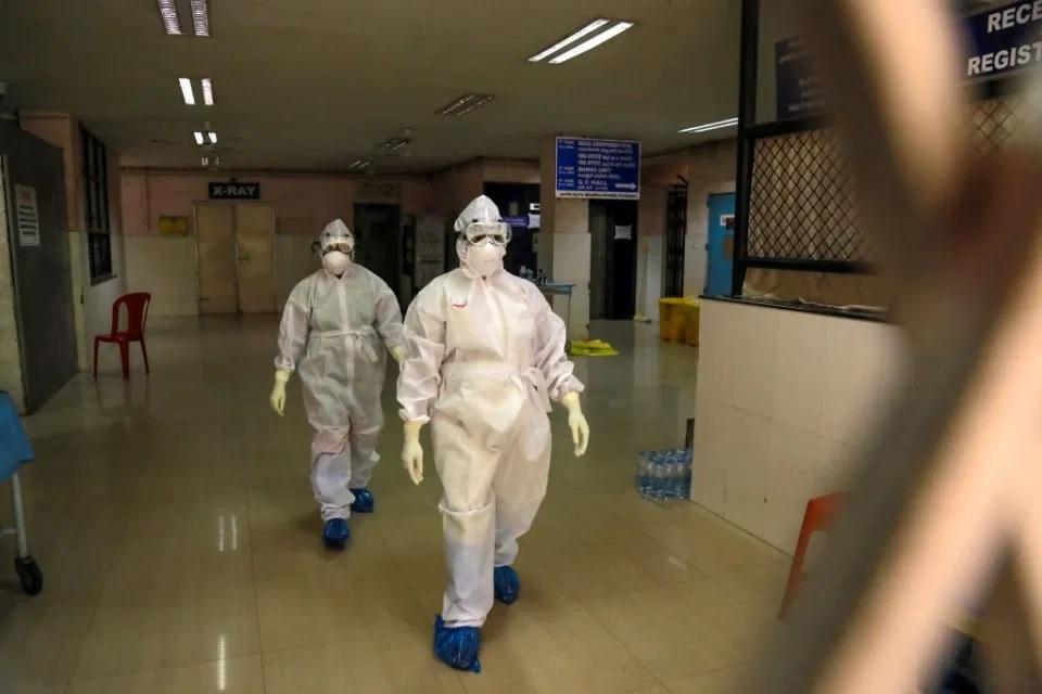Cảnh báo virus từ dơi gây phù não có thể là đại dịch tiếp theo -0