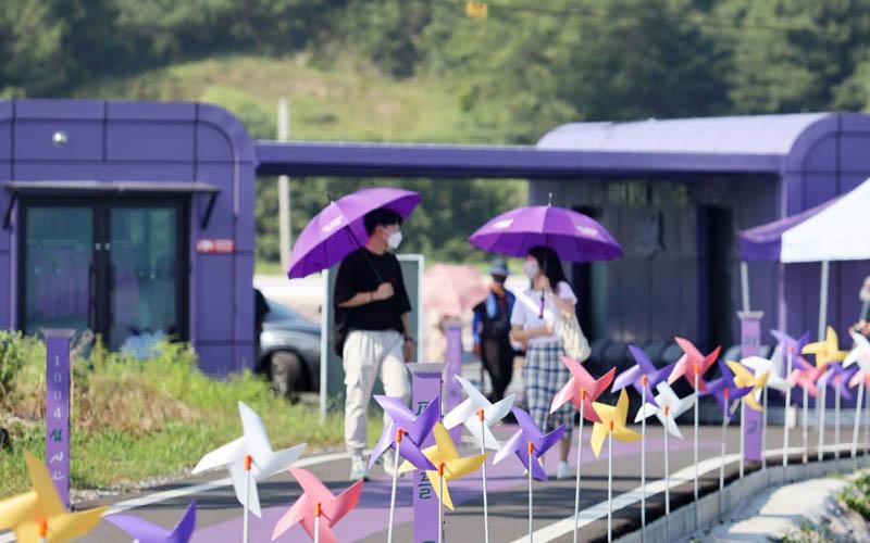 """Độc đáo """"Quần đảo Tím"""" hút khách ở Hàn Quốc -0"""