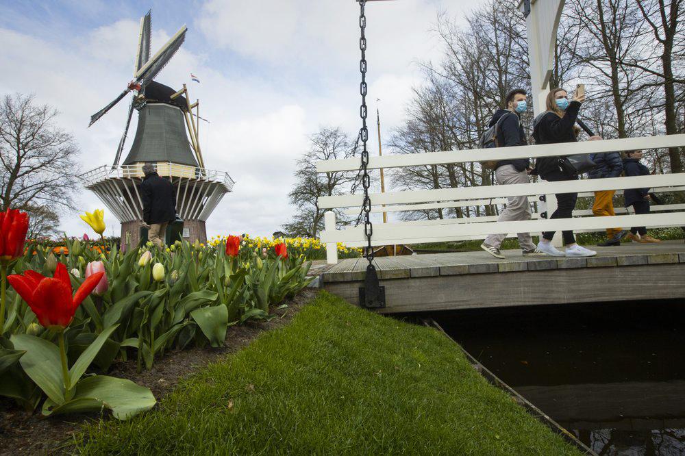 Hà Lan chào đón du khách vườn hoa nổi tiếng Keukenhof -2