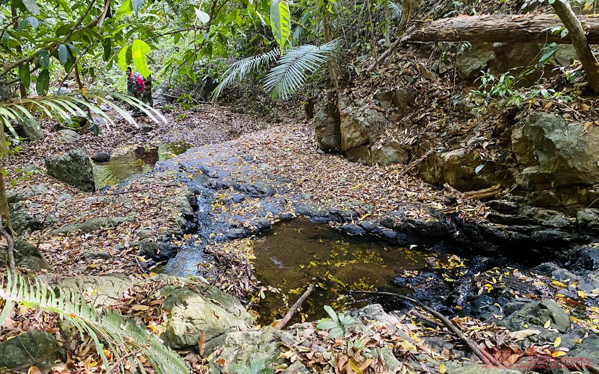 Ấn tượng thiên nhiên Di sản ASEAN trên dãy Trường Sơn  -1