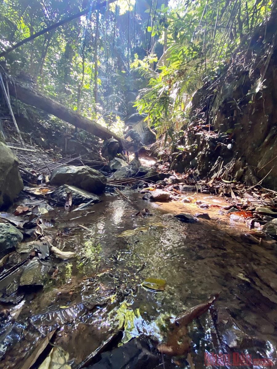Ấn tượng thiên nhiên Di sản ASEAN trên dãy Trường Sơn  -0