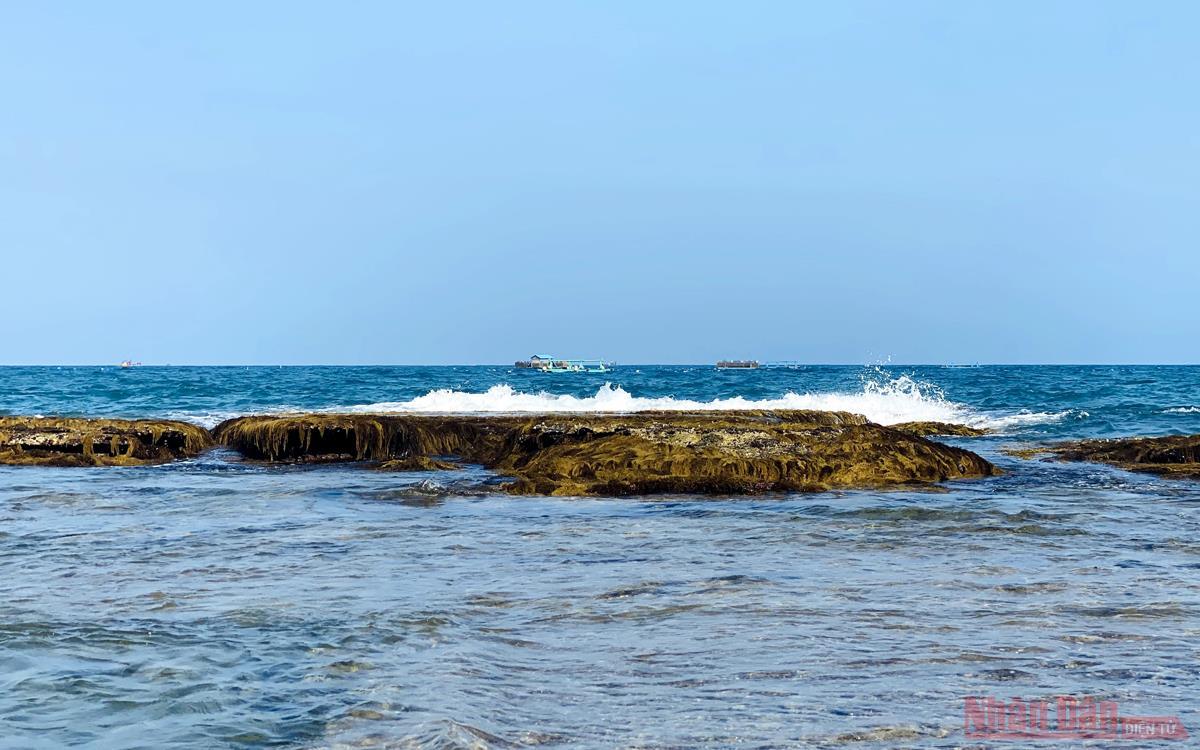 Bức tường bí ẩn dưới đáy biển Quy Nhơn -1