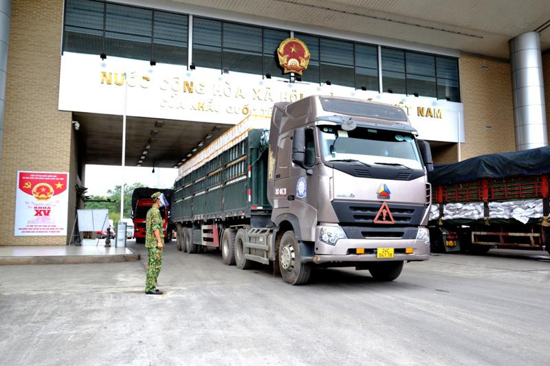Lào Cai tạo thuận lợi nhất cho xuất khẩu vải thiều Bắc Giang qua Cửa khẩu Kim Thành -0
