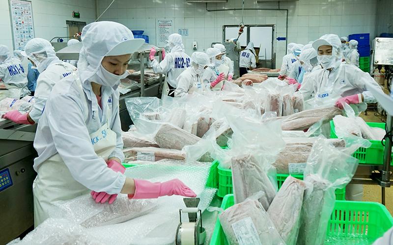 Quyết liệt phòng, chống khai thác hải sản bất hợp pháp -0