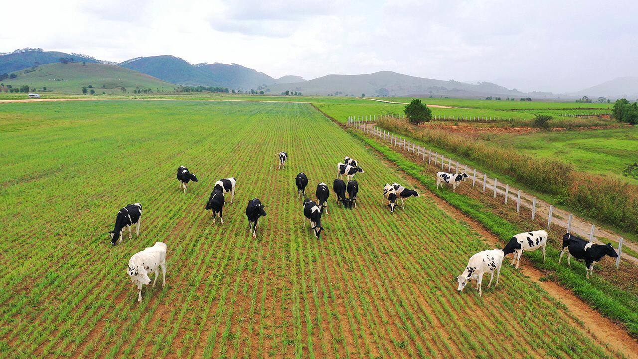 Siêu dự án trang trại của Vinamilk tại Lào sẽ đi vào hoạt động từ đầu năm 2022 -0