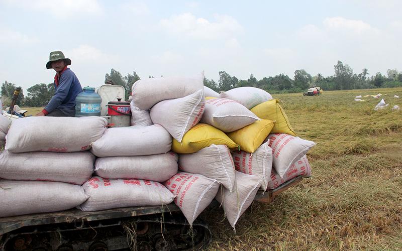 Nông dân gặp khó vì giá phân bón -0