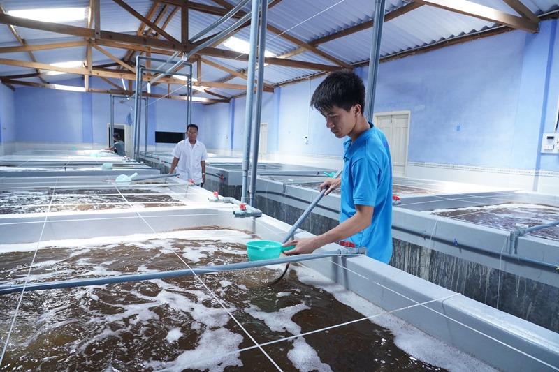 Ninh Thuận hướng đến là trung tâm sản xuất tôm giống chất lượng cao -0