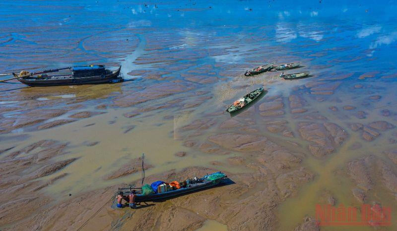 Bến Nôm đẹp ngỡ ngàng mùa nước cạn -0