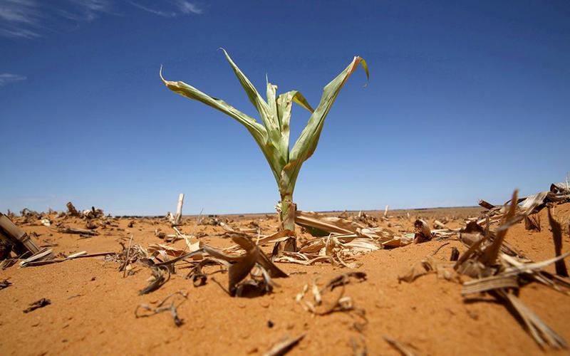 global_climate2-1631942489663.jpg