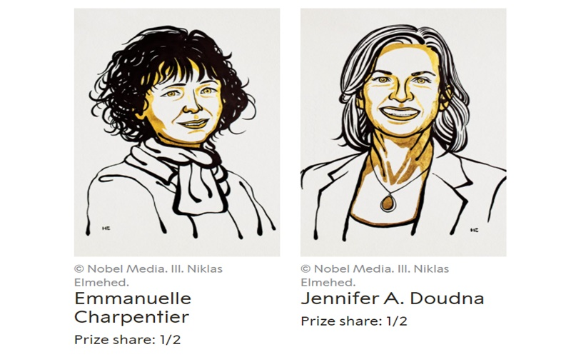 Giải Nobel Hóa học 2021 vinh danh nghiên cứu về cách xây dựng phân tử -0