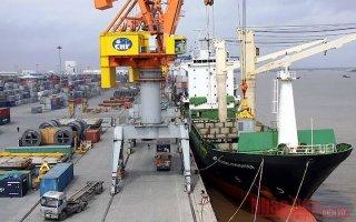 Hải Phòng đầu tư hơn 6.000 tỷ đồng xây dựng hai bến container