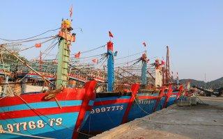 Sớm cơ cấu lại hoạt động nghề cá  ở Nghệ An