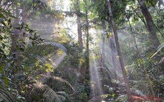 Ấn tượng thiên nhiên Di sản ASEAN trên dãy Trường Sơn